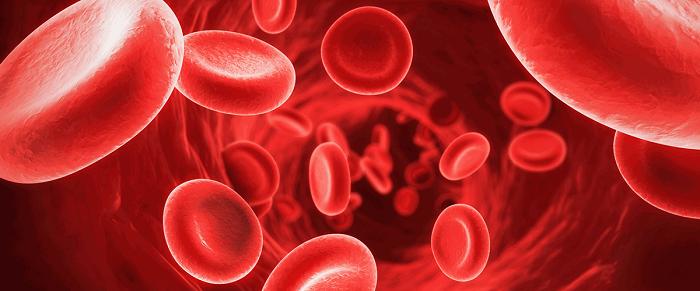 Falcemia: causas, síntomas, tipos, complicaciones, diagnóstico ...